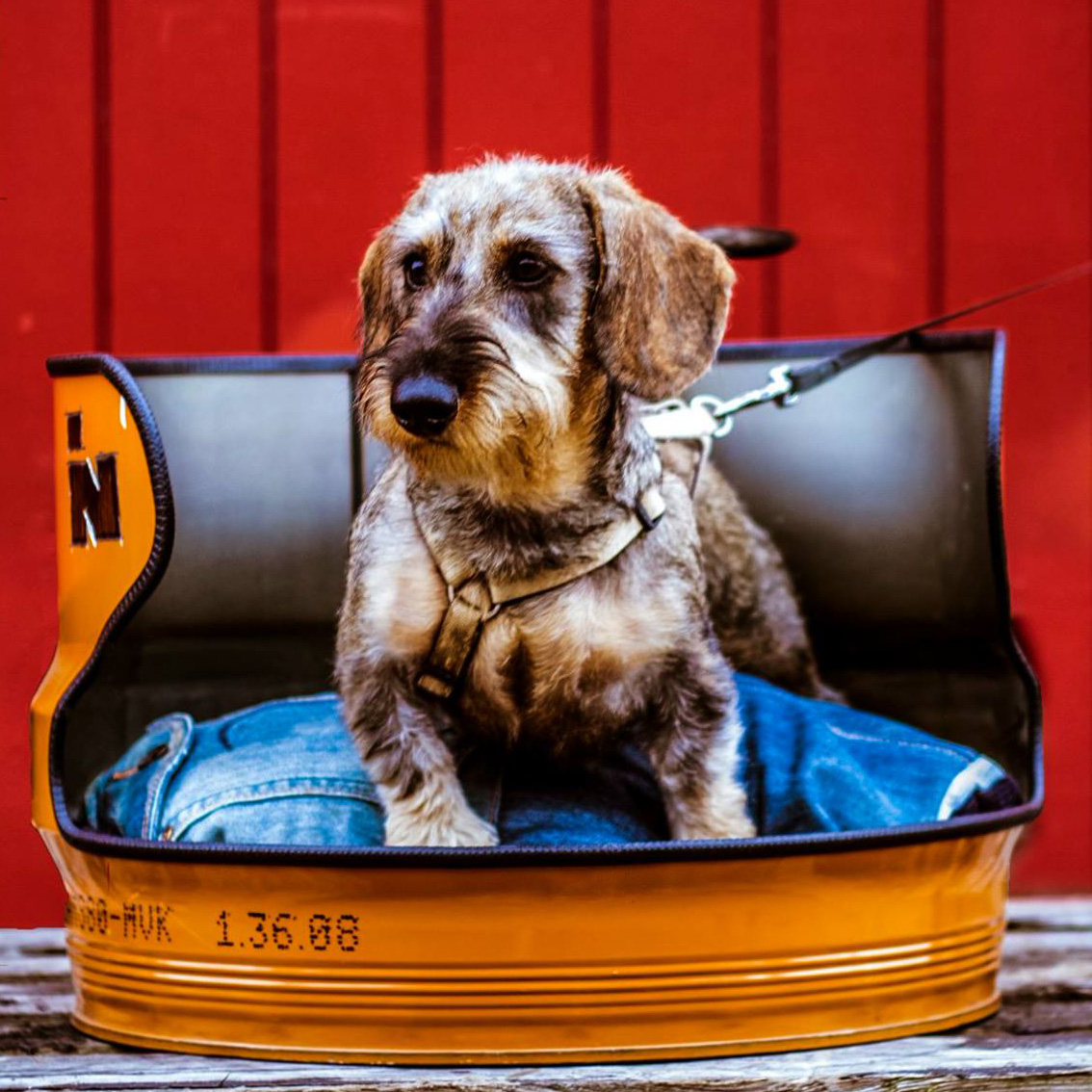 Upcycled Stoere Industriële Hondenmand van Indusigns