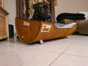 Stoere Hondenmand van Indusigns