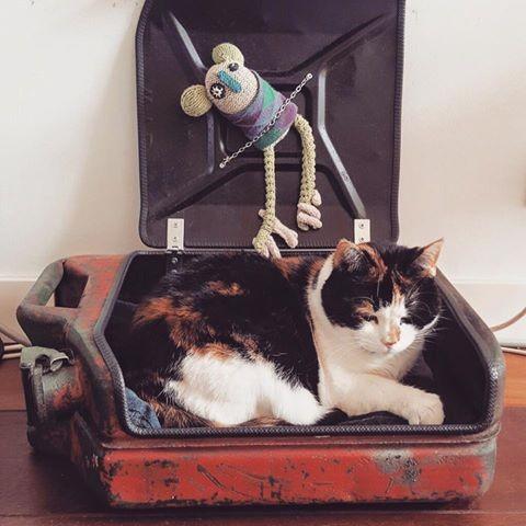 Industriële Stoere Kattenmand
