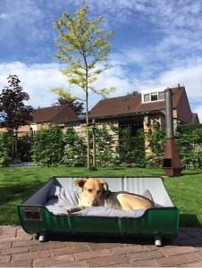 Hondenmand Indusigns Amsterdam