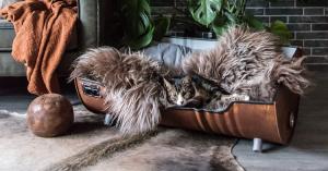 Kattenmand Indusigns Yvonne Kwakkel Indusigns