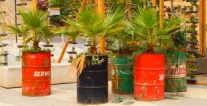 Olievat Plantenbak