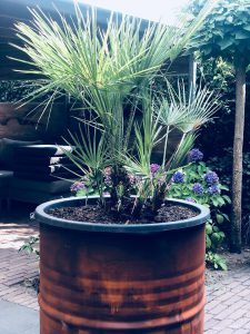 Plantenbak Olievat Roest