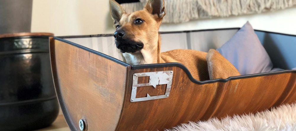 Stoere Hondenmand van Roestig Olievat
